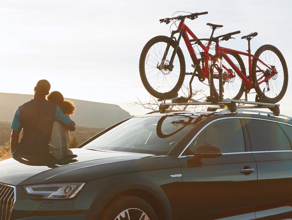 2015 Audi Q5 Aluminum Bike Rack